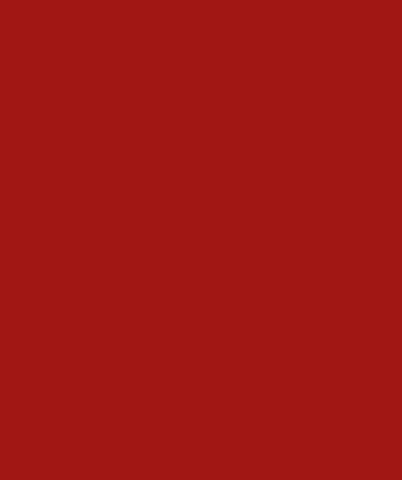 VFS-Logo
